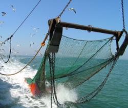 Imagen de un barco pesquero tirando las redes