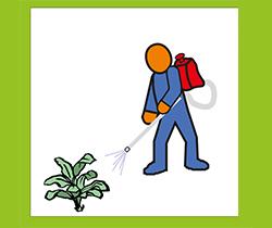 Dibujo de un trabajador fumigando plantas, con ropa de protección a productos fitosanitarios