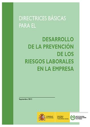 Directrices básicas para el desarrollo de la prevención de los riesgos laborales en la empresa - Año 2013