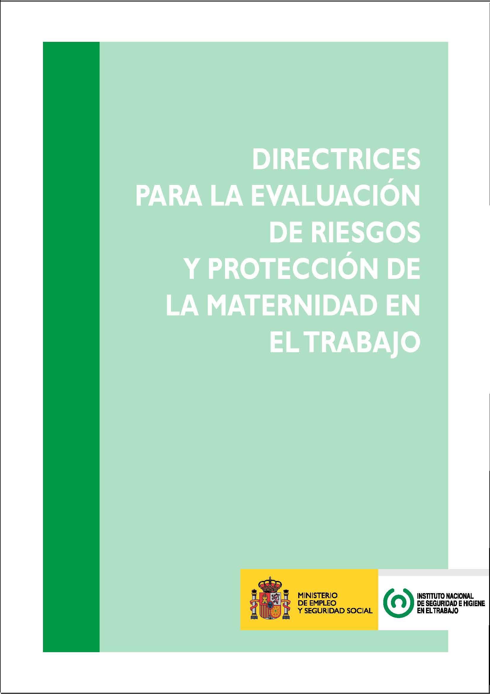Directrices para la evaluación de riesgos y protección de la maternidad en el trabajo - Año 2011